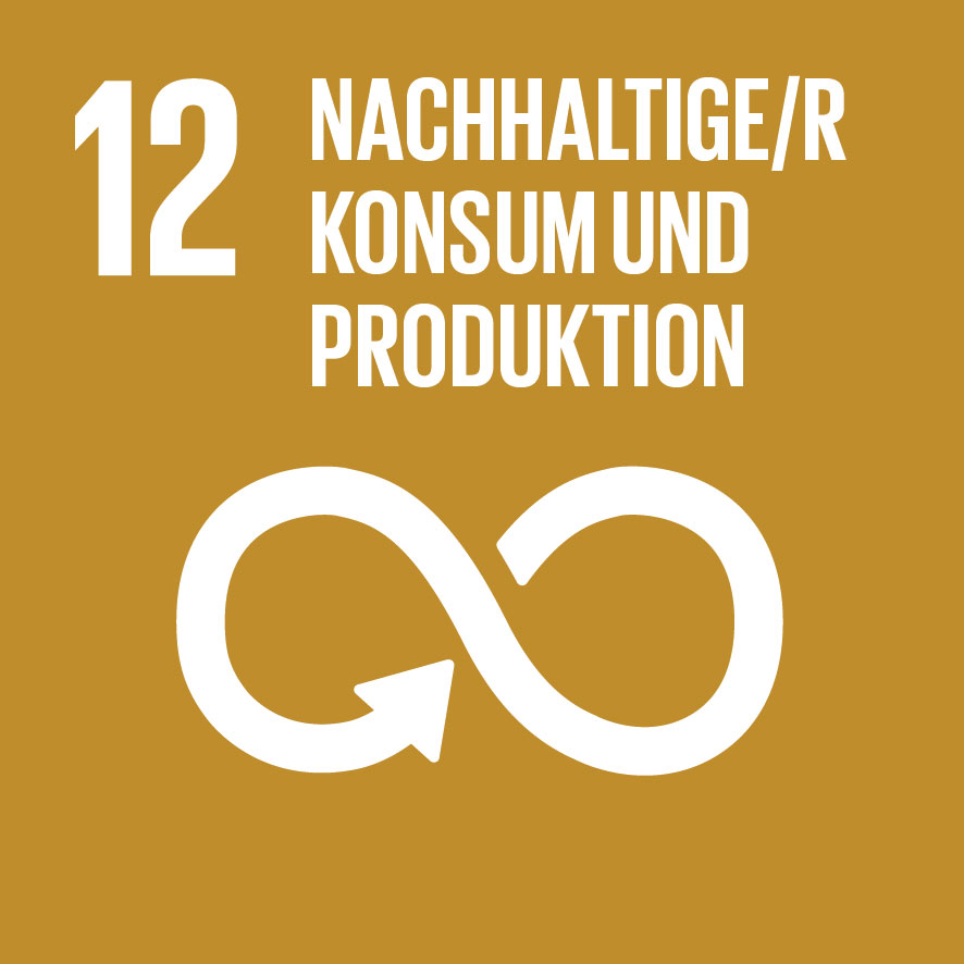 Sustainable Development Goals_icons-12 - Kopie