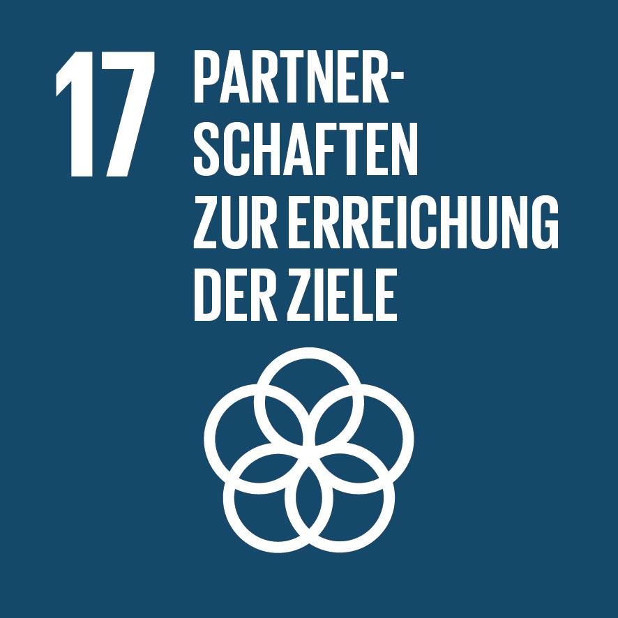 SDG-icon-DE-17